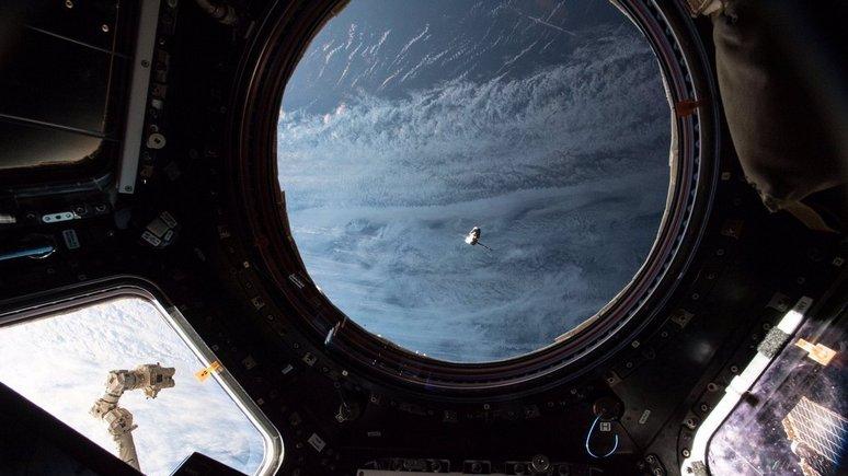 Daily Mirror: на борту МКС обнаружили устойчивые к лекарствам бактерии