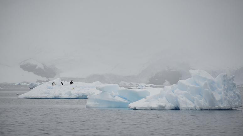 DWN: британские учёные пополнили список причин таяния льдов в Антарктиде