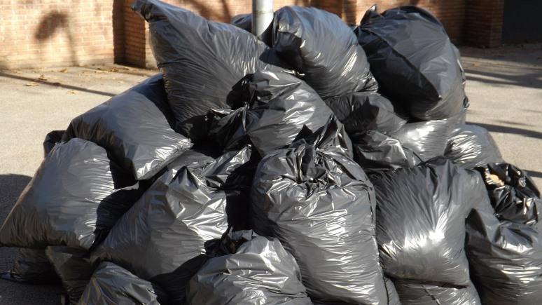 BarentsObserver: северян возмутил московский мусор