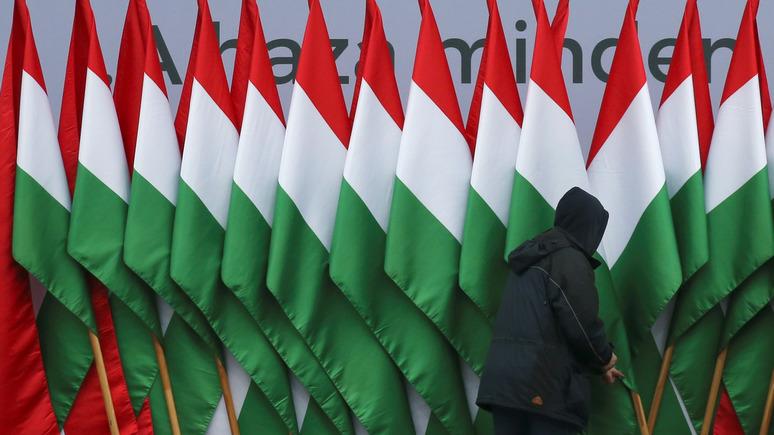 Вести: в НАТО поддержали Венгрию по поводу украинского закона об образовании