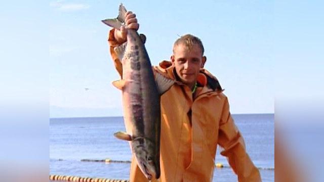 Россия ограничила ввоз норвежского лосося