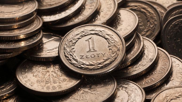 N-TV: Польша не спешит переходить на евро, чтобы сохранить экономический рост