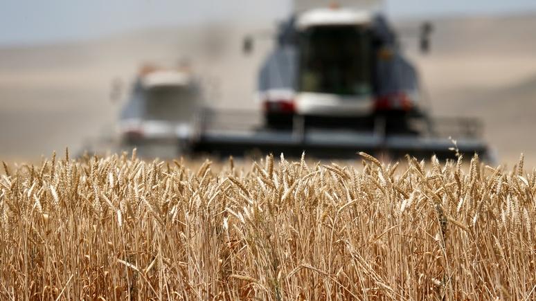 SWR: Россия нужна миру для защиты климата и продовольственной стабильности