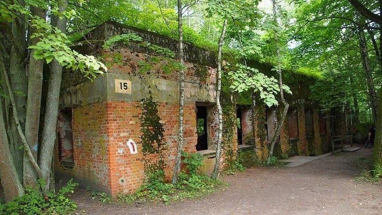 DW: из «Волчьего логова» Гитлера сделают мемориальный комплекс