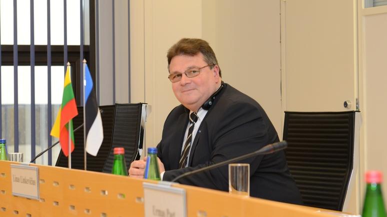 Глава МИД Литвы: прямой угрозы нет, но милитаристская риторика России внушает беспокойство