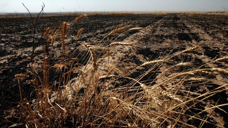 MDR: человечество впервые исчерпало годовой запас ресурсов планеты уже к июлю