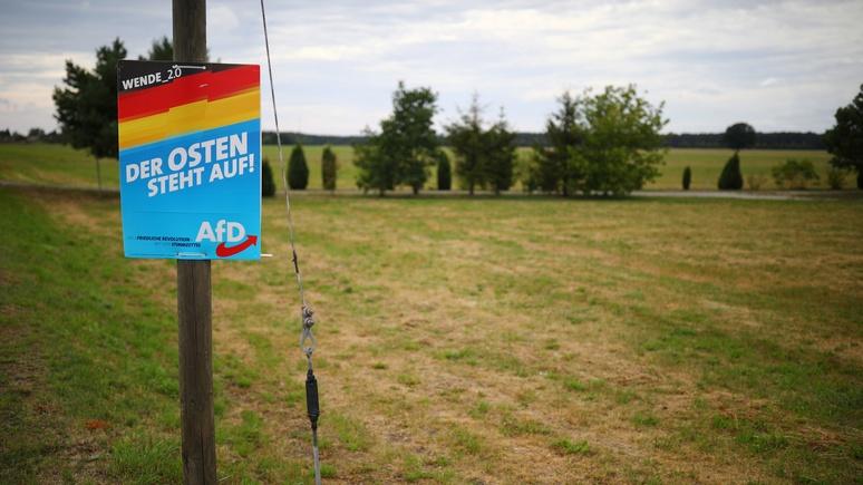 Bild: чем ближе выборы, тем дальше АдГ вырывается в лидеры на востоке Германии