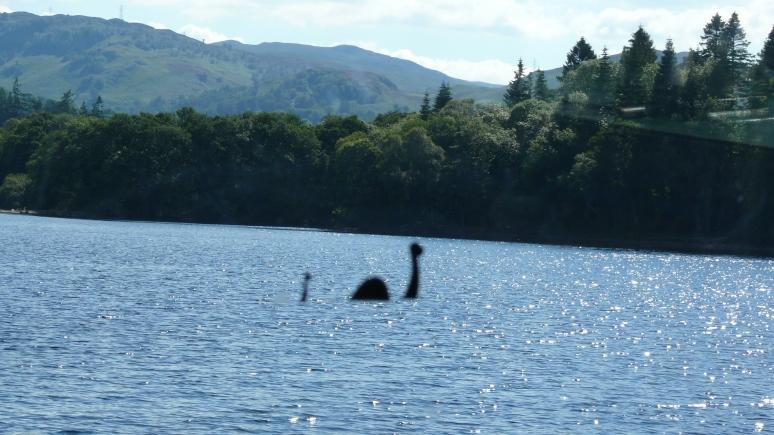 Times: новозеландские учёные считают лох-несское чудовище гигантским угрём