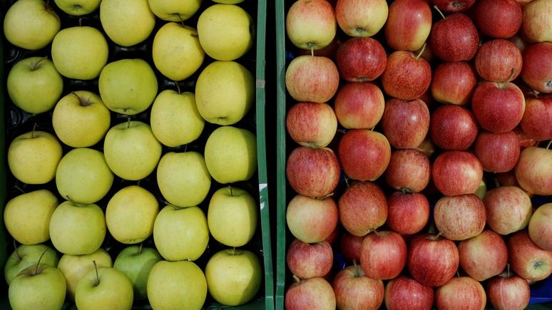 ORF: австрийские садоводы страдают от обилия польских яблок из-за российского эмбарго