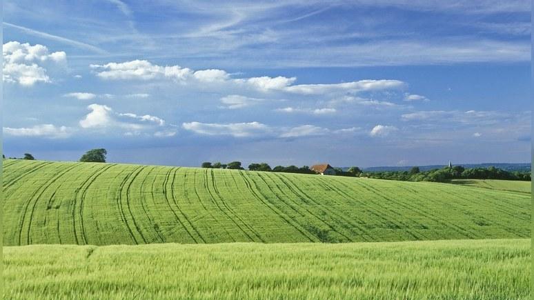 Daily Mail: «Возвращайся в Россию!» —  английский фермер не поделил дорогу с потомком Романовых