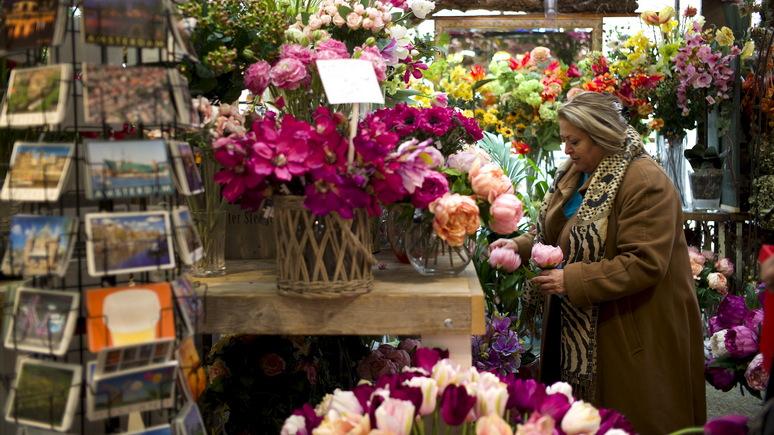 DT: шокирующая правда об амстердамских тюльпанах — зацветает лишь один процент из проданных туристам