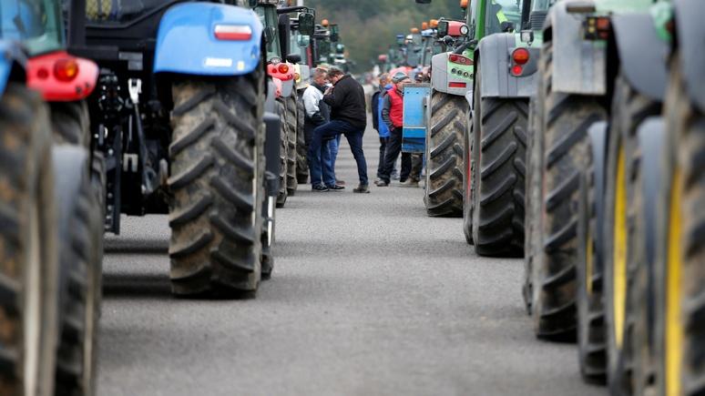 DWN: недобросовестность политиков и завышенные требования — фермеры выплеснут свой гнев на улицы французских и немецких городов