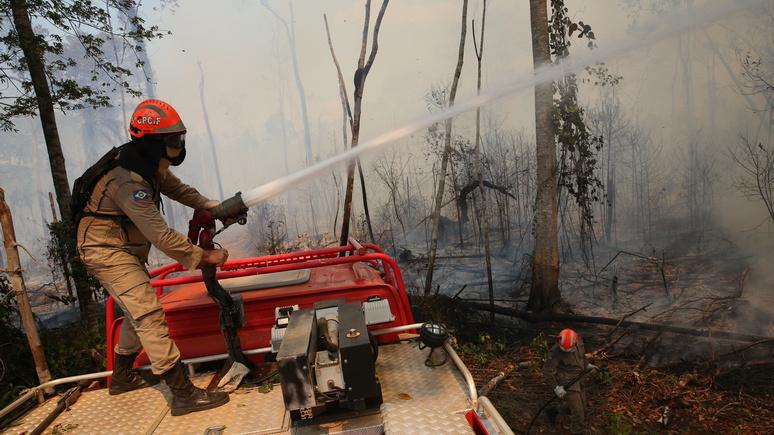 Guardian: Болсонару обвинил Ди Каприо в пособничестве поджигателям лесов Амазонии