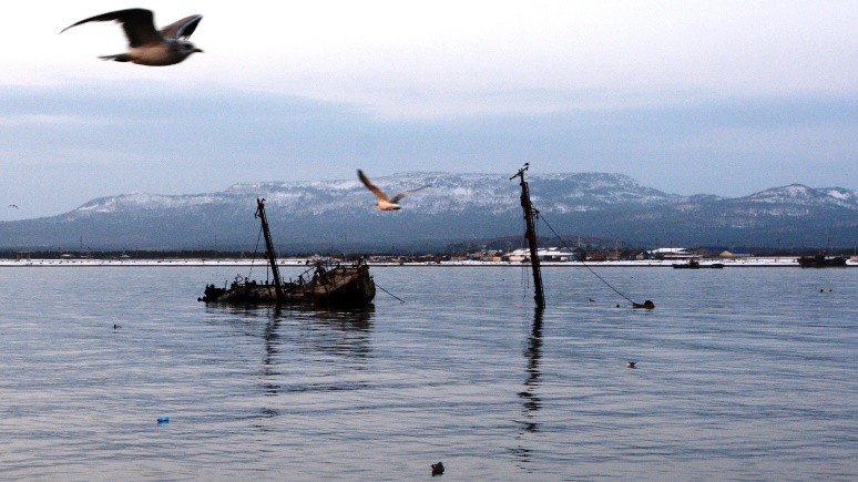 Hokkaido Shimbun: Курильские острова станут доступны японцам в виртуальной реальности