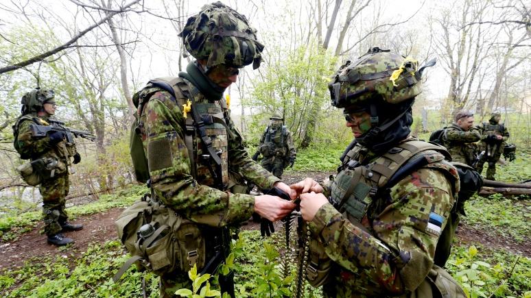ERR: «Весенний шторм» в этом году пройдёт без гостей из НАТО