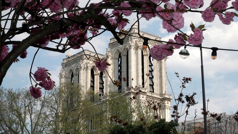 Искусствовед рассказал Le Figaro, почему план Макрона восстановить Нотр-Дам за 5 лет является ошибкой