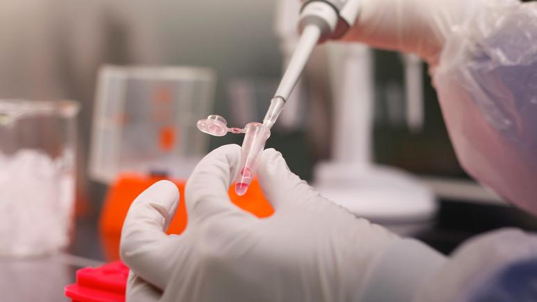 Bloomberg: верхушка айсберга — китайский вирусолог об изучении природы коронавируса