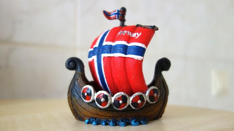 Local: норвежская пара обнаружила в подполе артефакты эпохи викингов