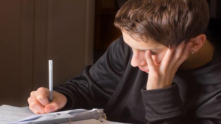 Daily Mail рассказала о «поразительной разнице» в качестве дистанционного обучения учеников частных и государственных школ Великобритании