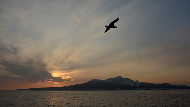 Японский политолог: наша цель — все четыре острова, а не два