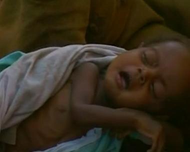 أكثر من 12ألف لاجئ سوداني إلى تشاد