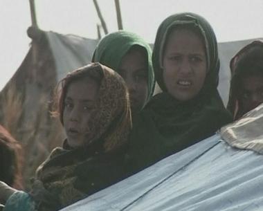 مسؤول اممي يقف على حقيقة معاناة اللاجئين الافغان