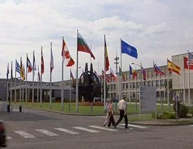 الناتو يختار بين روسيا وجورجيا