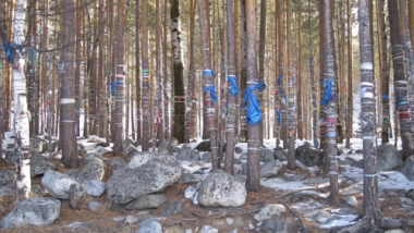 القماش الملون. مادة أساسية في الجبال لإرضاء آلهة المكان وتيسير الطريق.