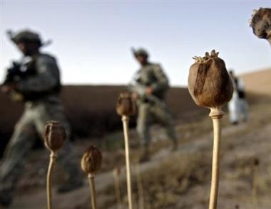 مكافحة تهريب المخدرات من أفغانستان من أولويات التعاون بين روسيا والناتو