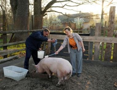 تضارب الانباء حول اول وفاة بسبب انفلونزا الخنازير في روسيا