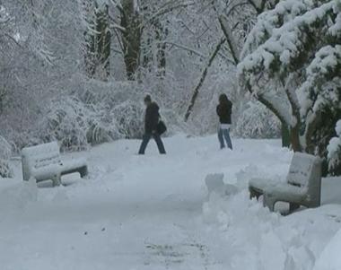 الثلوج تسبب اختناقات مرورية في روسيا واوربا