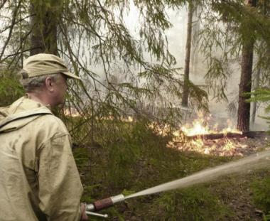 الحرائق تلتهم غابات روسية جراء ارتفاع درجات الحرارة