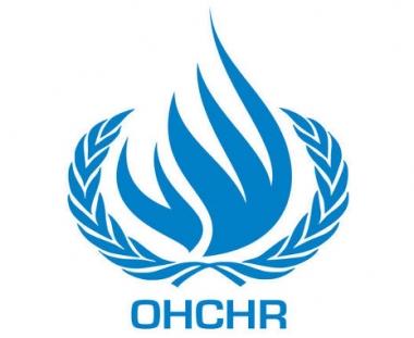 مجلس حقوق الانسان : التحقيق في حادث اسطول الحرية سيرصد انتهاكات حقوق الانسان