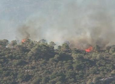 إسرائيل تعلن أنها تسيطر على النيران في جبل الكرمل ولا تحتاج إلى المزيد من طائرات الإطفاء