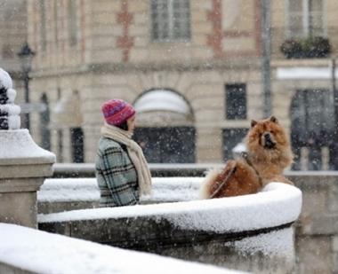 تساقط الثلوج الغزيرة تشل عمل وسائل النقل في موسكو  والعديد من المدن الاوروبية