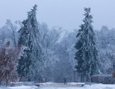 إعلان حالة الطوارئ في عدد من مناطق مقاطعة موسكو بسبب تساقط الثلوج الغزيرة