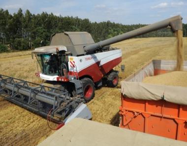 مدفيديف يكلّف حكام الأقاليم بالمحافظة على استقرار سوق الحبوب