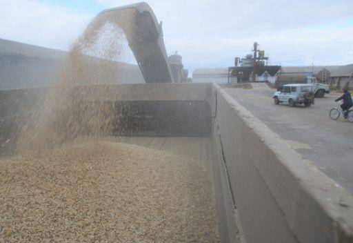 بوتين: استئناف صادرات الحبوب يعتمد على محصول هذا العام