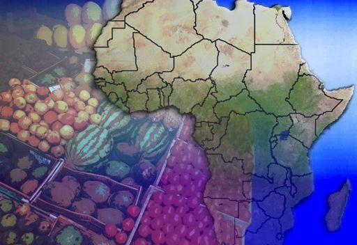 مسؤول روسي: روسيا ستواصل سياسة شطب ديون الدول الإفريقية