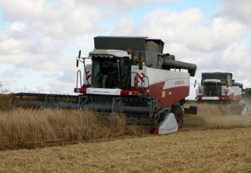 تضارب التوقعات بشأن محصول الحبوب الروسي هذا العام