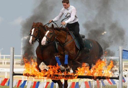 الملك يفوز في سباق الخيول على جائزة الرئيس الروسي
