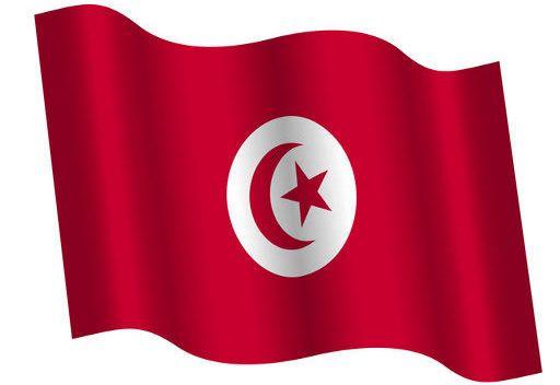 تونس تنضم للمحكمة الجنائية الدولية