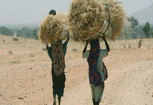 الامم المتحدة تمدد مهمة بعثتها في دارفور لعام آخر