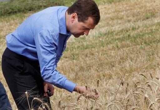 مدفيديف يتوقع جمع 90 مليون طن من الحبوب هذا العام