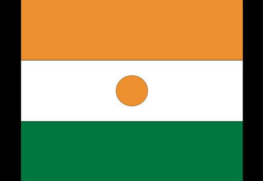 النيجر لن تسلم المسؤولين الليبين لديها رغم الضغوط