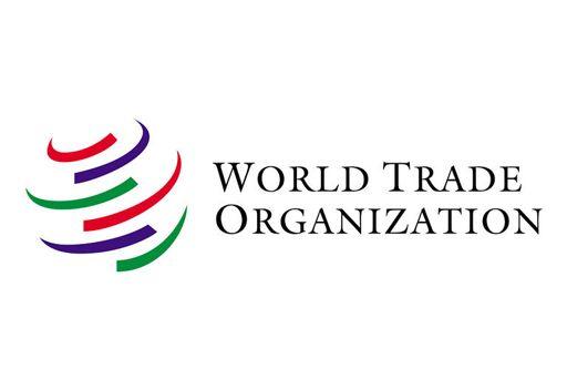 جورجيا تقبل اقتراح الوسطاء السويسريين مما سيفتح لروسيا طريقا الى منظمة التجارة العالمية