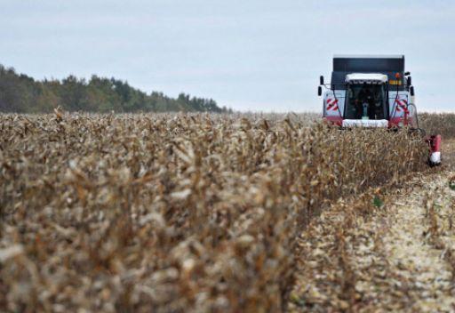 بوتين: الحكومة الروسية ستفرض قيودا على تصدير الحبوب في حال تجاوز حجم الصادرات 24 - 25 مليون طن
