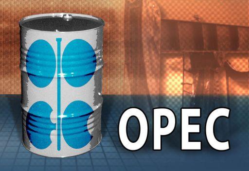 الاوبك تأمل في عدم فرض حظر اوروبي على شراء النفط الايراني