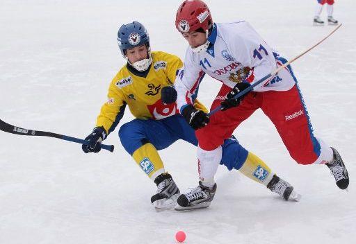 المنتخب الروسي للشباب يحرز بطولة العالم بهوكي الكرة