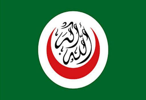 منظمة التعاون الاسلامي تعارض التدخل العسكري في الشأن السوري